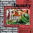 Urban_beauty