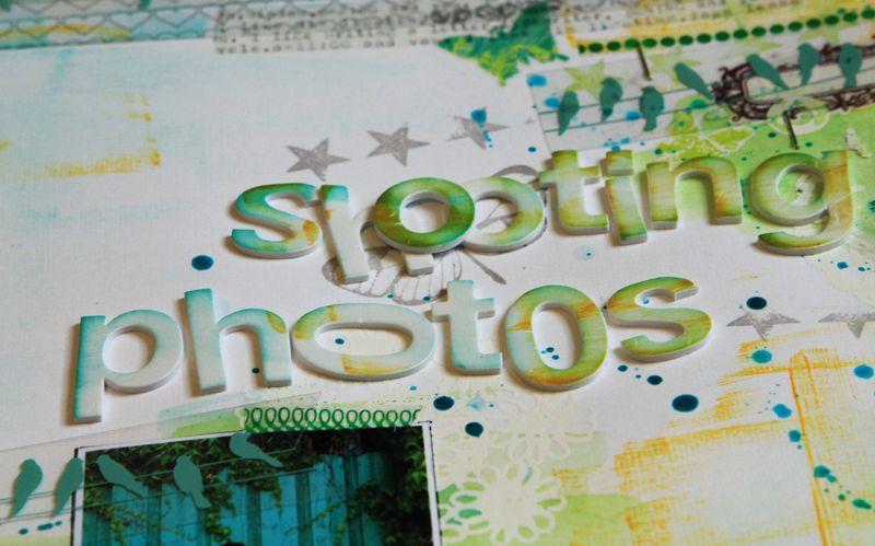 Zoomshootingphotos2