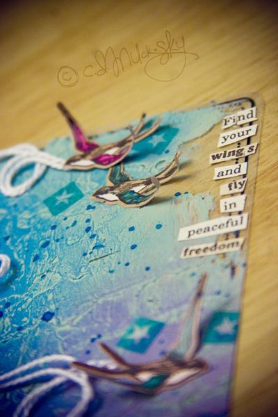 CD_fly birds
