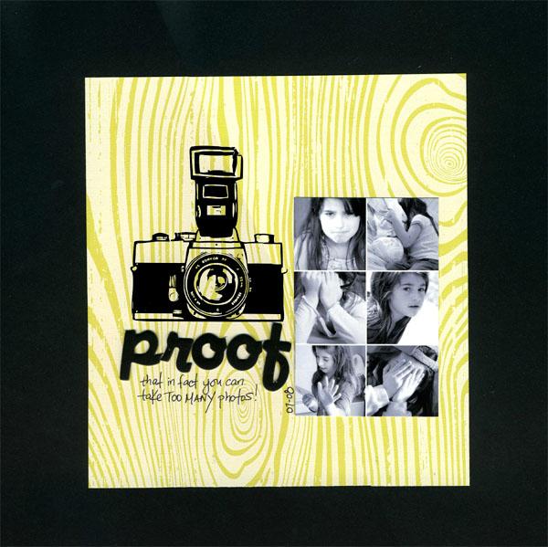 Proof-camera